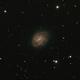 NGC 7418,                                Roger Groom