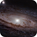 M31 Starless,                                musol2000