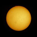 The Sun in Ha (first light),                                Alf Jacob Nilsen