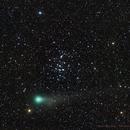 Cometa Lovejoy in M44,                                Roberto Barcellona