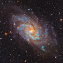 M 33,                                Skywalker83