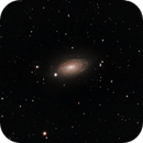 M63 - The Sunflower Galaxy,                                Don Walters