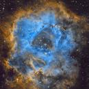 The Rosette Nebula,                                Lar McCarthy