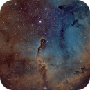 IC 1396 in SHO,                                Tim Gillespie