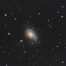 NGC 772,                                Nathan Duso