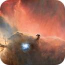 B33 - HorseHead Nebula .... without stars,                                Andre van Zegveld