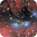NGC 6914, a complex of nebulosities in Cygnus,                                Enrique Arce