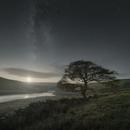 Moorland Moonset,                                Tristan Campbell