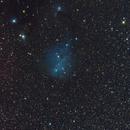IC 2169 Area Wide Field,                                Dean Jacobsen