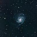 M101 Pinwheel Galaxy,                                LarryDoucet
