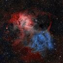 Sharpless 132 - The Lion Nebula,                                Michel Makhlouta