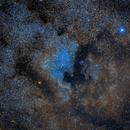 North America Nebula,                                Carlo Caligiuri