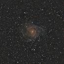 IC 342,                                Patryk