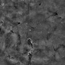 IC 1396 in Ha,                                Markice Stephenson