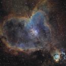 Heart Nebula (Hubble Palette),                                Charles Ward