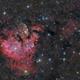 NGC7822 HaLRGB ,                                Paddy Gilliland