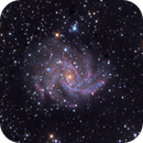 NGC6946,                                Vincenzo Galletti