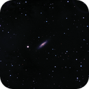"""NGC 6503 the """"Lost in Space"""" Galaxy,                                Doug Azwell"""