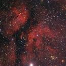 IC1318, Gamma Cygni nebula,                                Mike Carroll