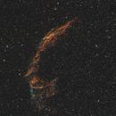 NGC 6992 El Velo.,                                Carles Zerbst