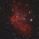 NGC 7380, Wizard Nebula,                                Dietmar Bode