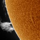 Solar prominenece/ 21-08-2015/ 11:40 UTC,                                Pawel Warchal