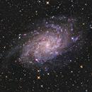 M33,                                Leonardo Priami