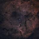 Elephant's Trunk nebula,                                MikeTheTechGeek