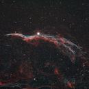 Western Veil Nebula (Witches Broom),                                Trevor Jones
