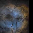 IC1396   4Panel- Mosaic,                                Andreas Zirke