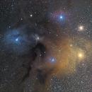 Antares Nebula to Rho Ophiuci,                                Olga W. Ismael