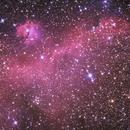 Seagull Nebula,                                Astro_Hoff