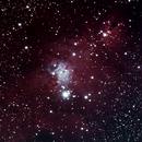 NGC 2264 Christmas Tree Cluster, Cone Nebula & SH2-273 Fox Fur Nebula,                                Maciej Pliszkiewicz