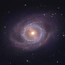 M95 Barred Spiral in Leo,                                Ian Gorin