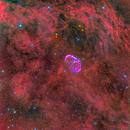Crescent Nebula (NGC 6888),                                Miles Zhou