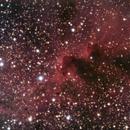 Inside IC1396,                                Adrie Suijkerbuijk
