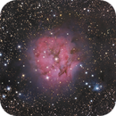 IC 5146 - Cocoon nebula - Ha LRVB,                                Jeffbax Velocicaptor