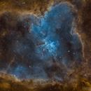 Nebulosa Corazón - IC1805,                                Bror Federico Ced...