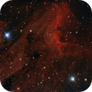 IC5070 Pelican Nebula,                                Richard Cardoe