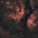 IC1318 ED80 - Nébuleuse du Papillon - Butterfly Nebula,                                Laurent