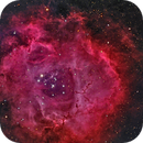 Rosette Nebula,                                KC