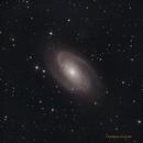 M81 Bode's galaxy,                                Rob Kottink