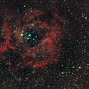 Rosette Nebula,                                Maxou034