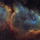Soul Nebula - IC1848 - Hubble Palette,                                Thomas Richter