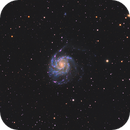 Wide field of M101 in LHaRGB,                                Benjamin Csizi