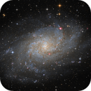 The Triangulum Galaxy,                                Alex Roberts