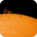 Prominence,                                Marcello B