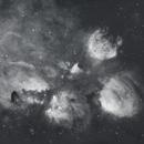 Cat's Paw Nebula in Ha, NGC 6334, SH2-8,                                Anne-Maree McComb