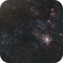 The Tarantula Nebula (NGC 2070) and its companions in the Large Magellanic Cloud,                                Tim Anderson