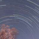 Star Trails 11-27-17,                                Van H. McComas